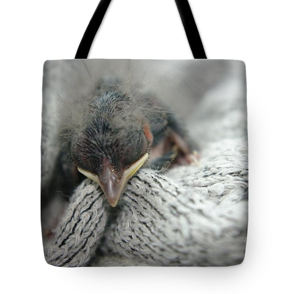 Rescued  Tote Bag by Jeff Swan