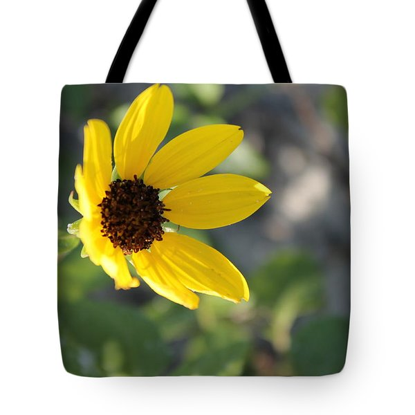 Resting On The Sun Tote Bag
