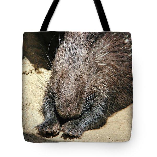 Resting Porcupine Tote Bag by Mariola Bitner