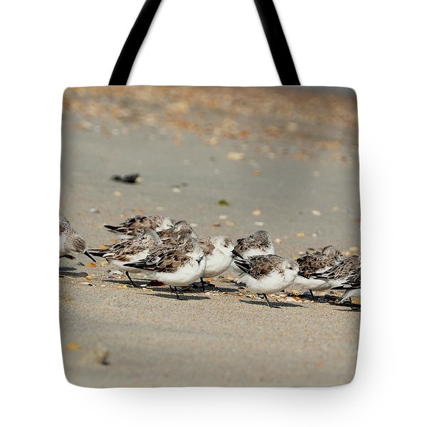 Resting Sandpipers Tote Bag