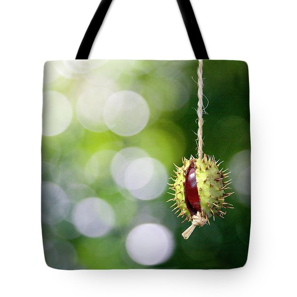 Retro Conker  Tote Bag by Richard Piper