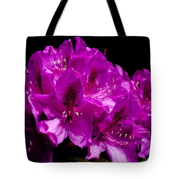 Rhododendron Tote Bag by David Patterson