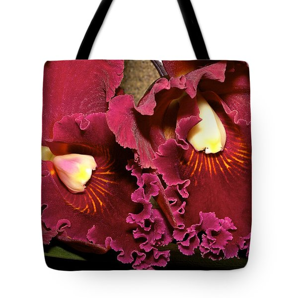 Rich Burgundy Orchids Tote Bag by Phyllis Denton