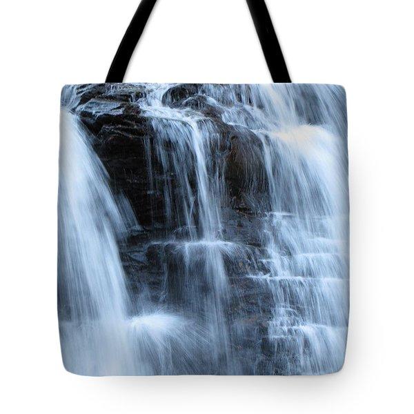 Ricketts Glen Waterfall 3942 Tote Bag by David Dehner