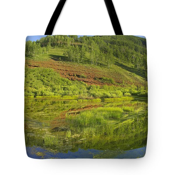 Rico Mountains Reflected In Dolores Tote Bag by Tim Fitzharris