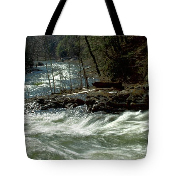 Riding The River Tote Bag by Karol Livote