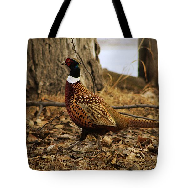 Ring-necked Pheasant Tote Bag by Alyce Taylor