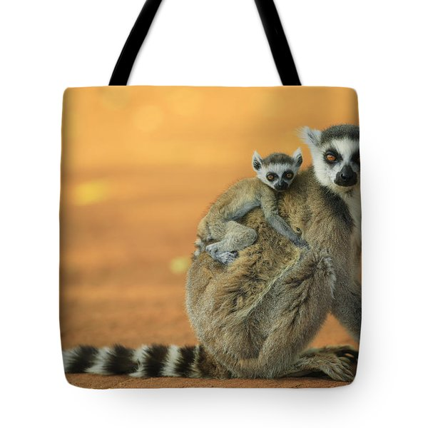 Ring-tailed Lemur Mother And Baby Tote Bag by Cyril Ruoso