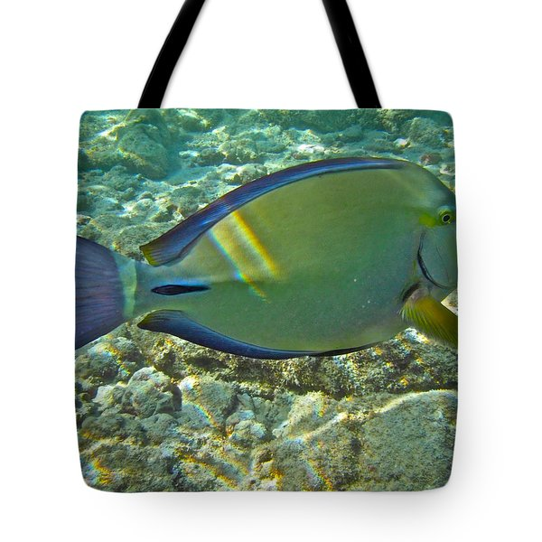 Ringtail Surgeonfish Tote Bag by Michael Peychich