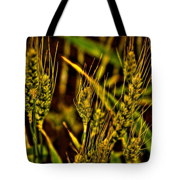 Ripening Wheat Tote Bag by David Patterson
