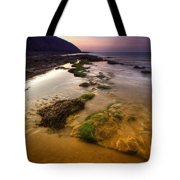 Rising Tides Tote Bag by Yhun Suarez