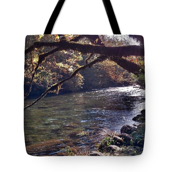 Rivee View Tote Bag by Janice Spivey