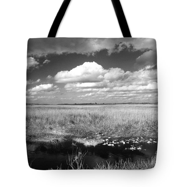 Tote Bag featuring the photograph River Of Grass - The Everglades by Myrna Bradshaw