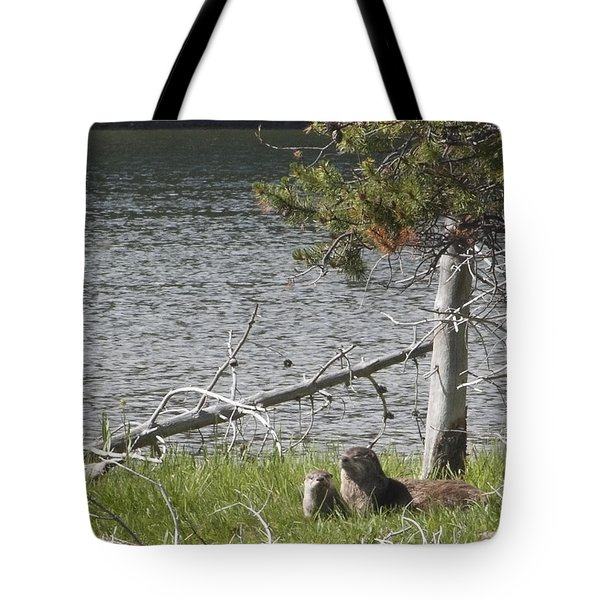 Tote Bag featuring the photograph River Otter by Belinda Greb