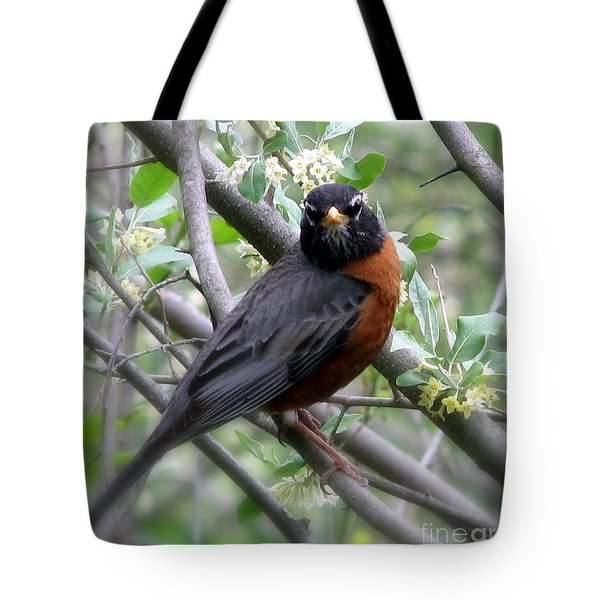 Robin In The Morning Tote Bag