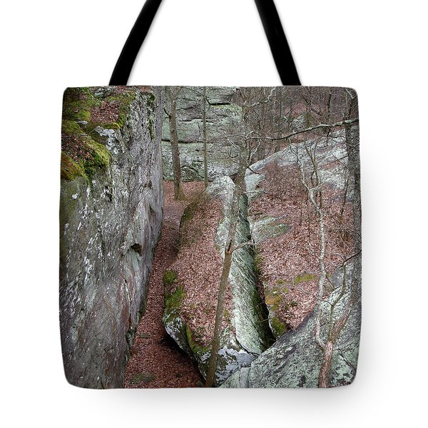 Tote Bag featuring the photograph Rock Calving by Paul Mashburn