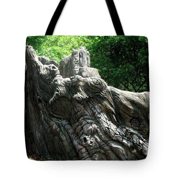 Tote Bag featuring the photograph Rock Formation 2 by Maria Urso