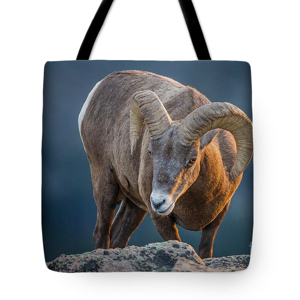 Rocky Mountain Big Horn Ram Tote Bag