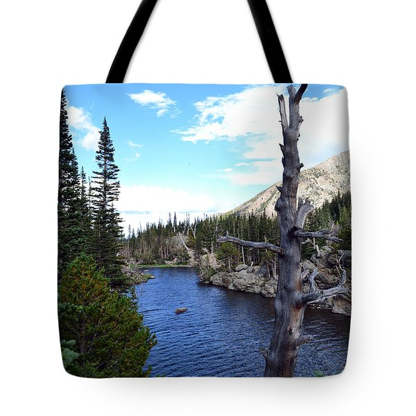 Tote Bag featuring the photograph Rocky Mountain National Park1 by Zawhaus Photography