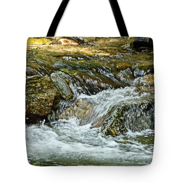 Tote Bag featuring the photograph Rocky River by Lydia Holly