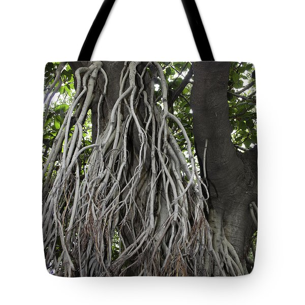 Tote Bag featuring the photograph Roots From A Large Tree Inside Jallianwala Bagh by Ashish Agarwal
