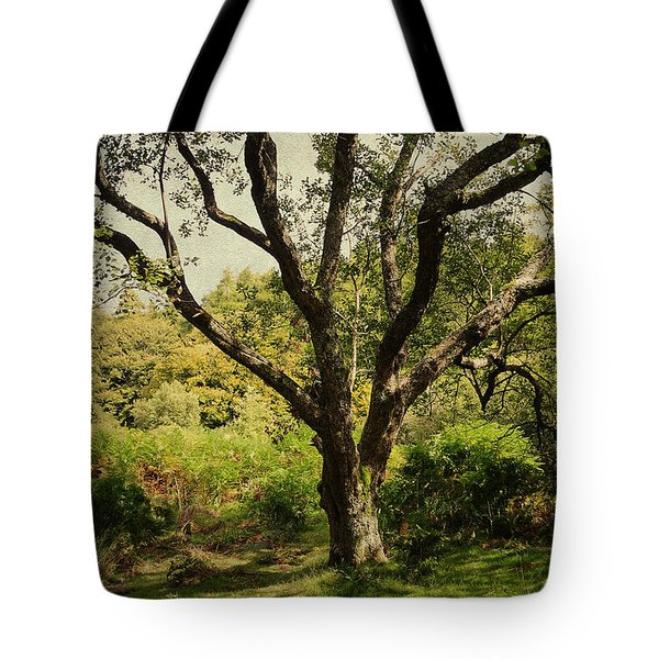 Roots Of Wisdom. Colorful Version. Wicklow Hills. Ireland  Tote Bag by Jenny Rainbow