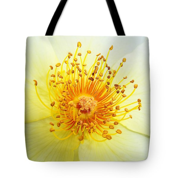 Rosa Golden Wings Tote Bag