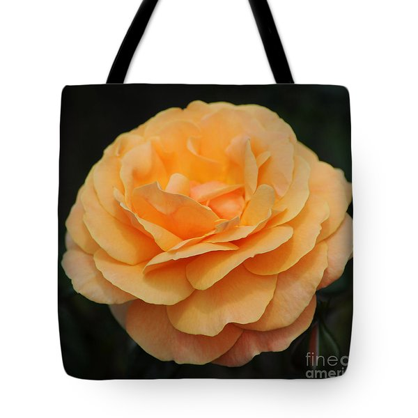 Rose 3 Tote Bag by Vivian Christopher