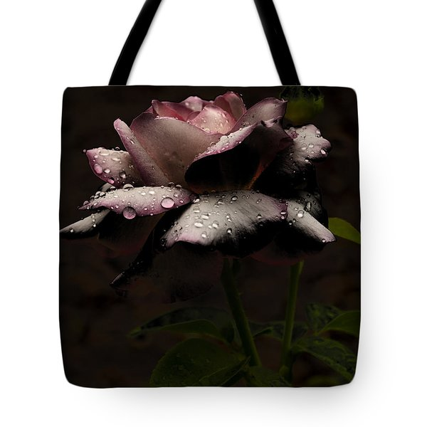 Tote Bag featuring the photograph Rose After Dark by Barbara Middleton
