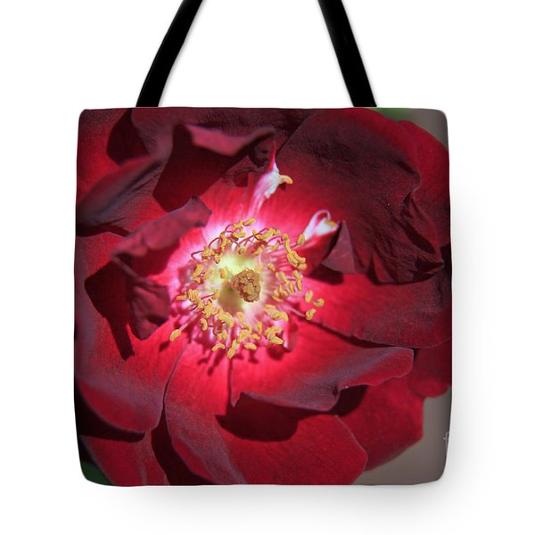 Rose Glow Tote Bag by Shawn Naranjo