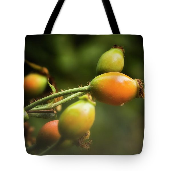 Tote Bag featuring the photograph Rose Hips by Albert Seger
