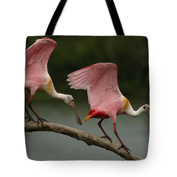 Rosiette Spoonbills Tote Bag by Bob Christopher