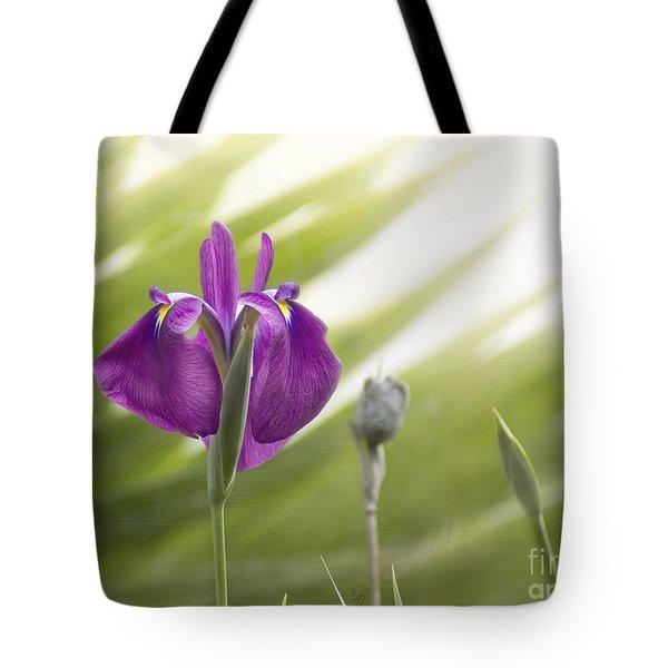 Purple Japanese Water Iris Tote Bag
