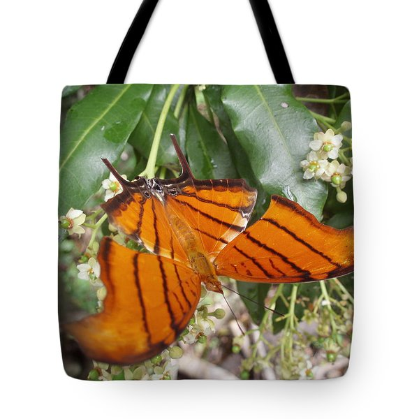 Rudy Daggarwing Tote Bag by Kimberly Mohlenhoff