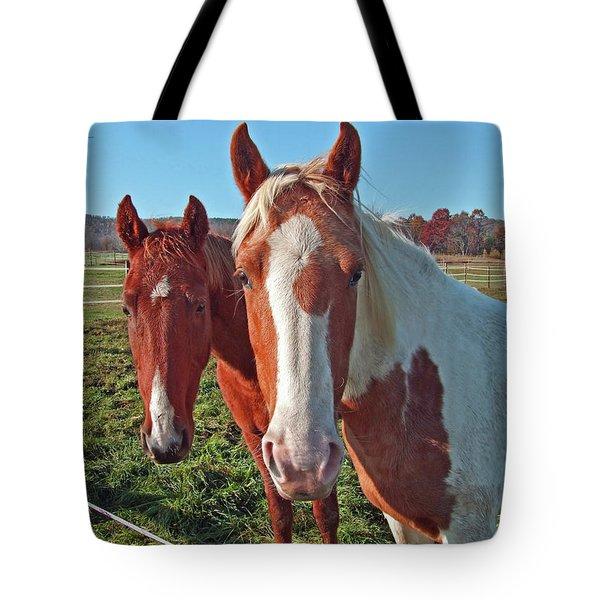 Ruff 'n Reddy Tote Bag