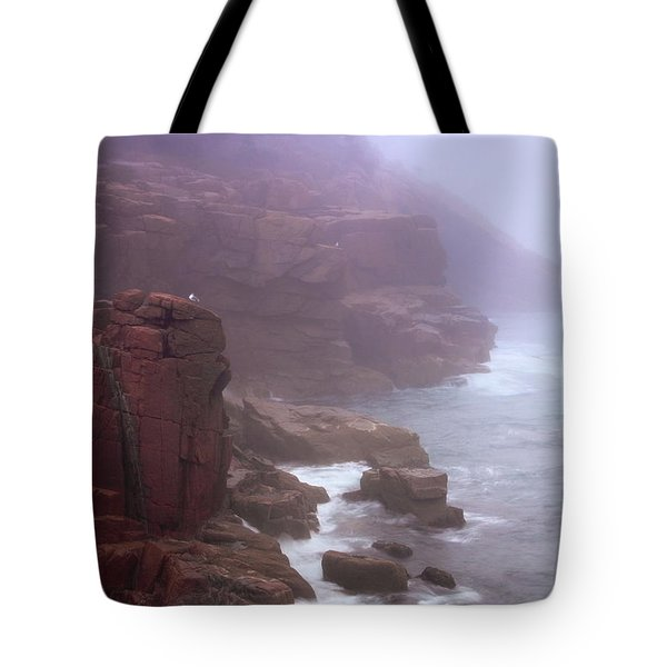 Rugged Seacoast In Mist Tote Bag