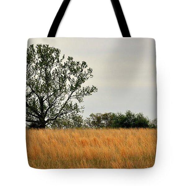 Rural Landscape Tote Bag by Marty Koch