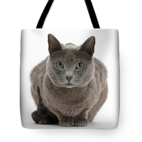 Russian Blue Cat Tote Bag by Mark Taylor