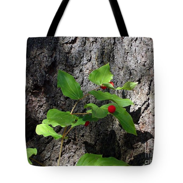 Tote Bag featuring the photograph Safe Haven by Jim Sauchyn