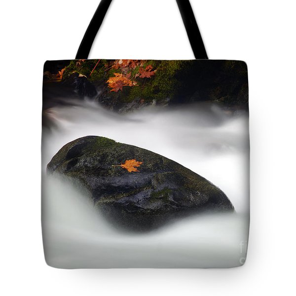 Safe Haven Tote Bag by Mike  Dawson