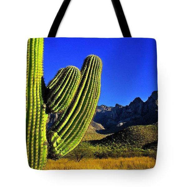 Tote Bag featuring the photograph Saguaro And Catalina Mountains by Jim Moore