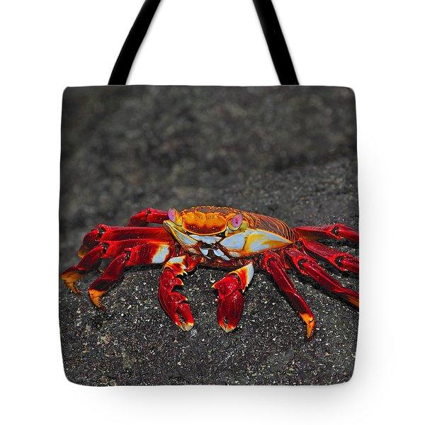 Sally Lightfoot Crab Tote Bag by Tony Beck