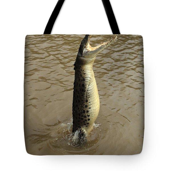 Salt Water Crocodile Tote Bag by Bob Christopher