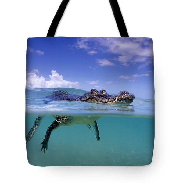 Salt Water Crocodile Tote Bag by Franco Banfi and Photo Researchers