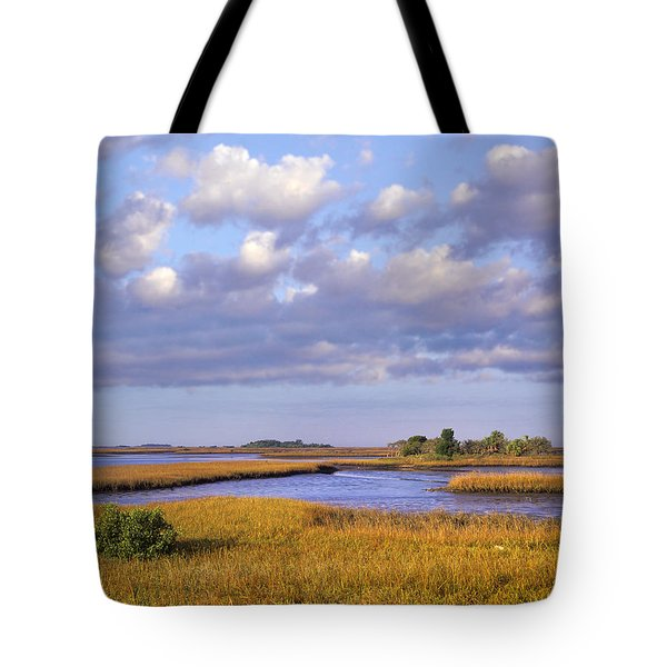 Saltwater Marshes At Cedar Key Florida Tote Bag by Tim Fitzharris