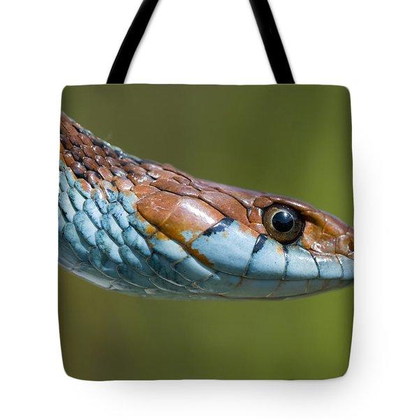 San Francisco Garter Snake Portrait Tote Bag