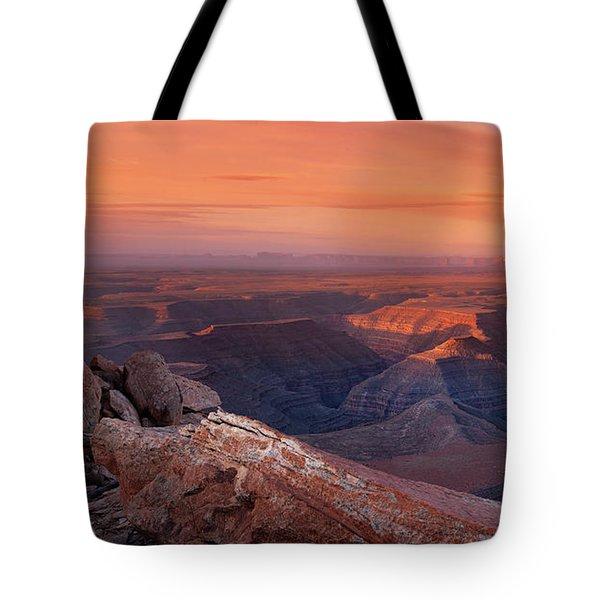 San Juan River Light Tote Bag by Leland D Howard
