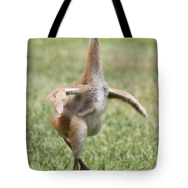 Sandhill Pirouette Tote Bag