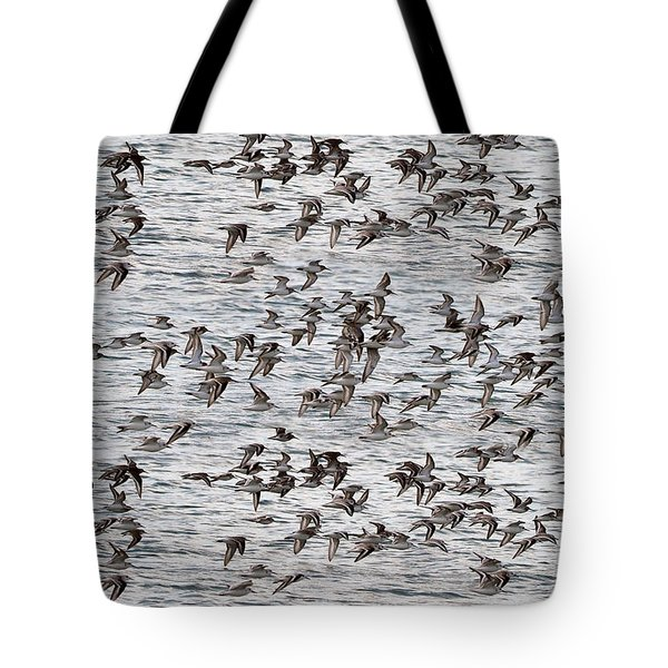 Tote Bag featuring the photograph Sandpipers In Flight by Dan Friend