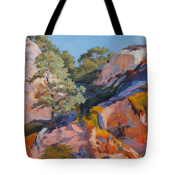Sandstone Canyon At Torrey Pines Tote Bag